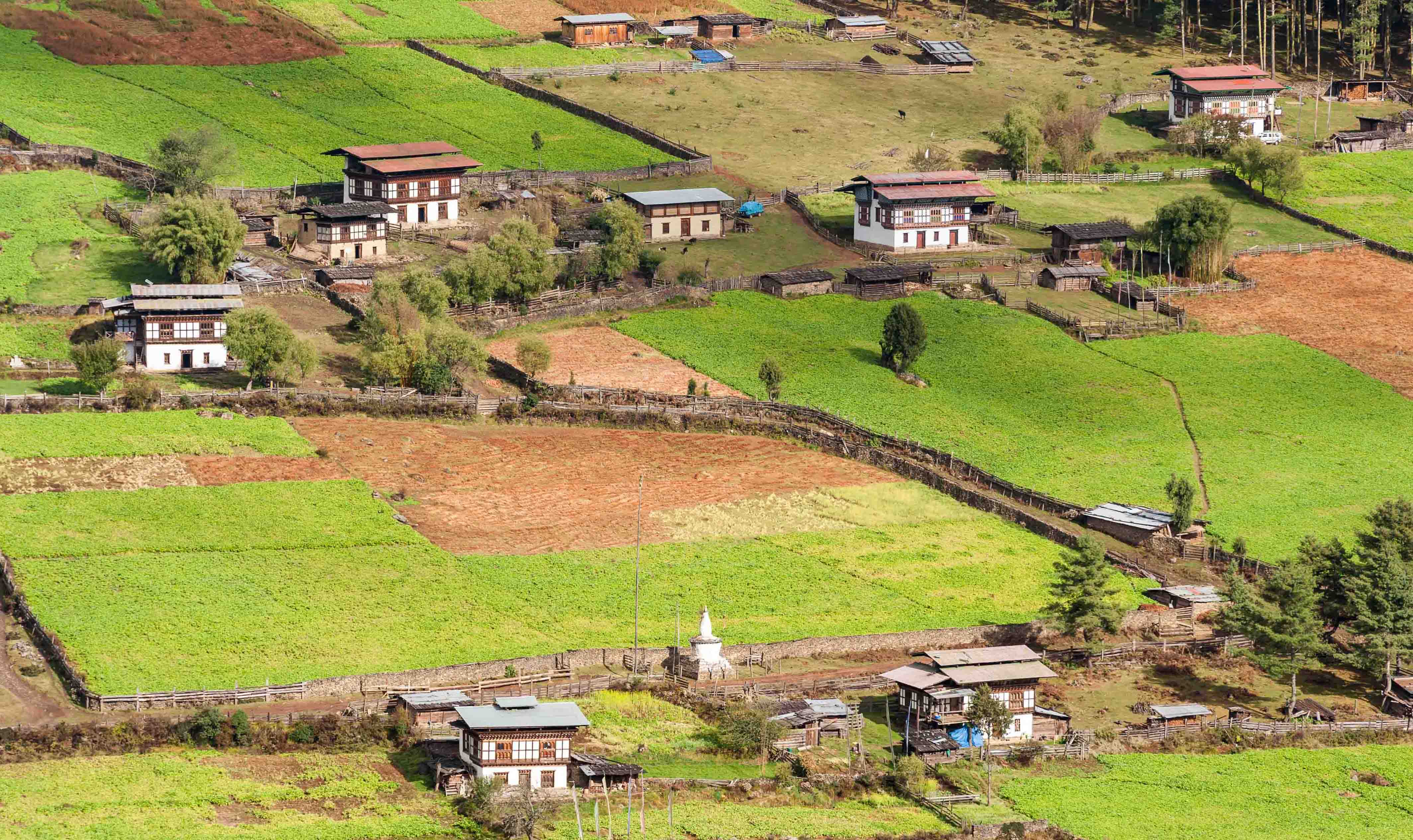 Peaceful Journeys to Bhutan for You