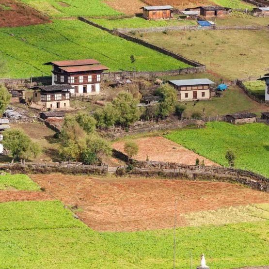 Farmer of Bhutan