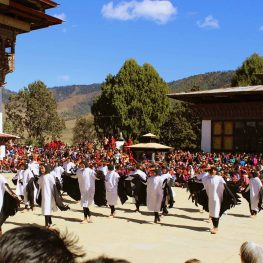 Black Necked Crane Festival – 11 November, 2020
