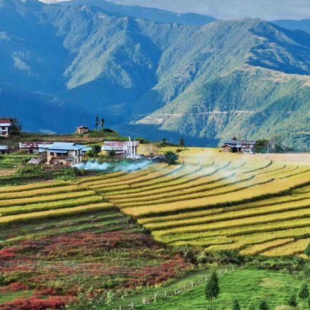 Radhi Village