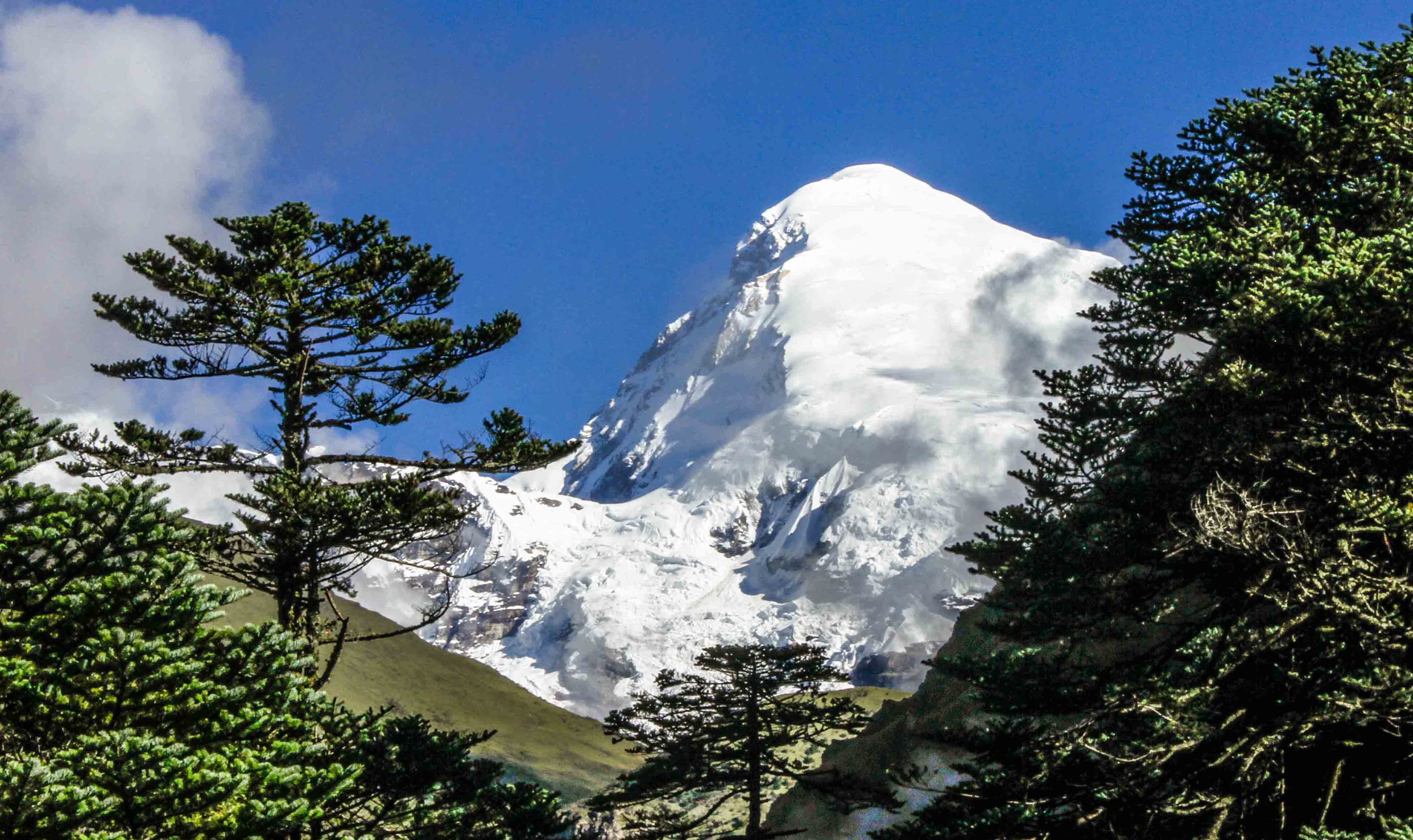 11 Nights 12 Days – Jomolhari Trek